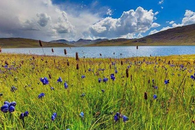 07 Days Tour to Deosai National Park Skardu Valley Pakistan