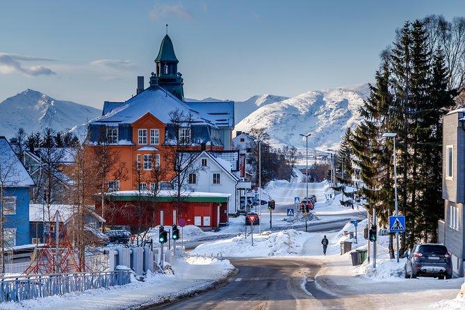 Polar explorers city walk