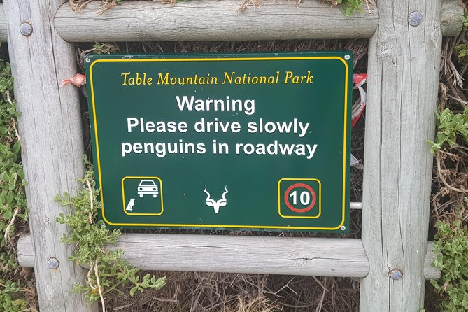 Private Tour - Cape Point, Penguins and Wine
