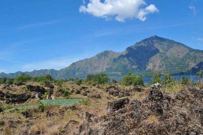 Bali Kintamani Ubud Full Day Tour