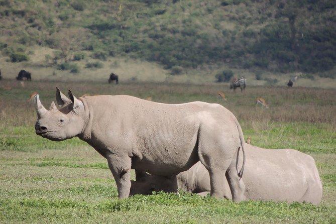 5 Days Tanzania Camping Safari, All Year Around