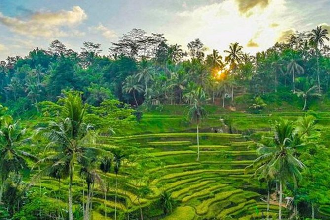 Bali 5 Days Tour Package - All Included