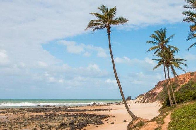 Excursão à Praia de Pipa - Saindo de Natal