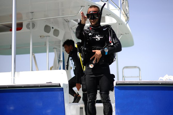 Catalina Island With Scuba Diving - Full Day Tour