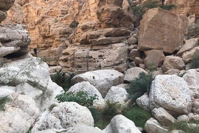 Private Day Trip To Wadi Shab & Bimmah Sinkhole Price Up To 5 Persons