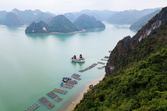 The Escape Sails – A Luxury Halong Bay Day Tour with a Difference photo 7