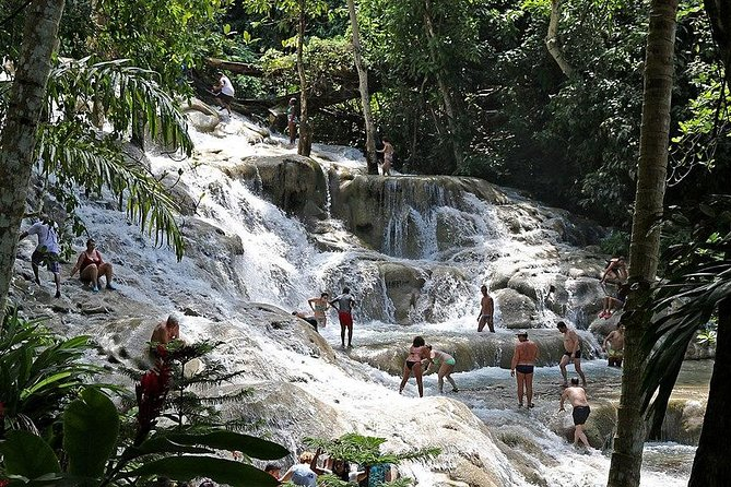Dunns River Falls Private Tour from Montego Bay Hotels
