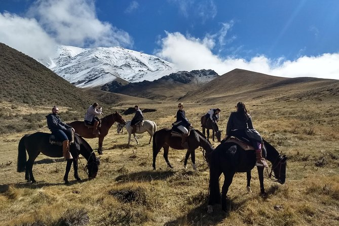 Horseback Riding in the Andes with Barbecue Lunch in Traditional Ranch