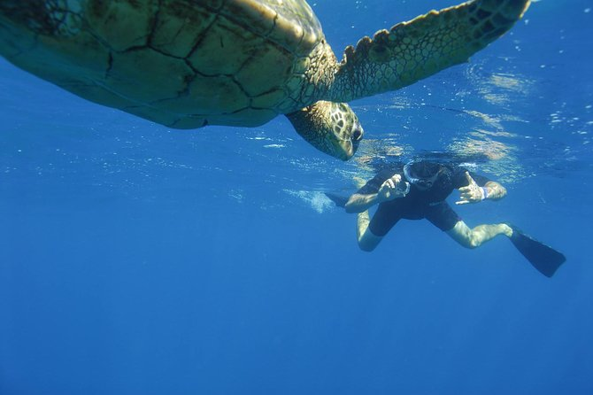 Kauai's Ultimate South Island Zodiac Boat Snorkel Adventure photo 9