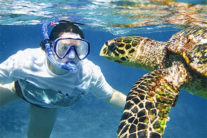 Kauai's Ultimate South Island Zodiac Boat Snorkel Adventure photo 1