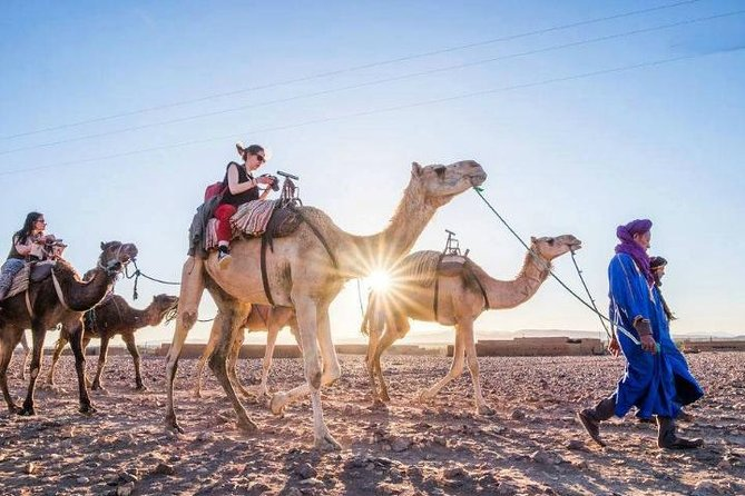 Agadir Camel Tour Ride 02 Hours photo 7