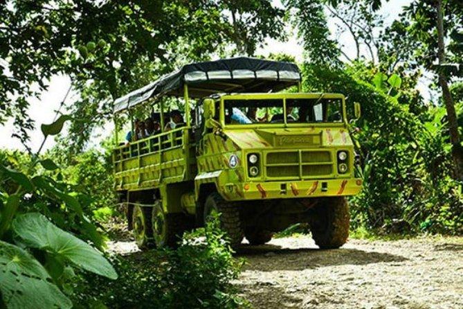 Safari of Fields - Punta Cana