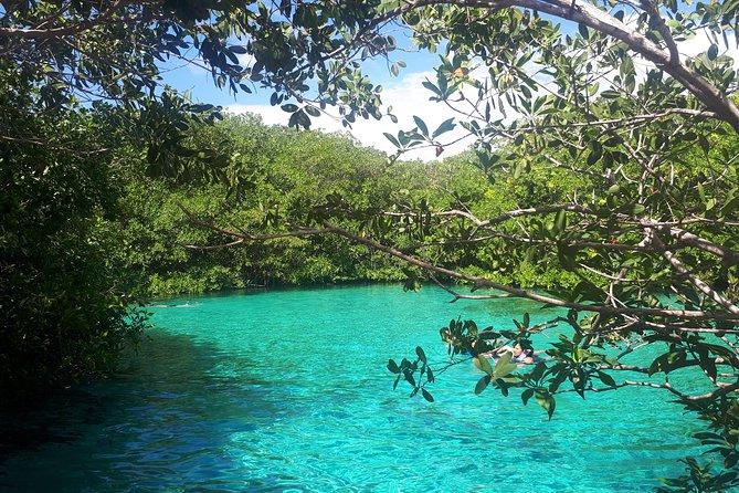Private Tulum & Cenotes tour