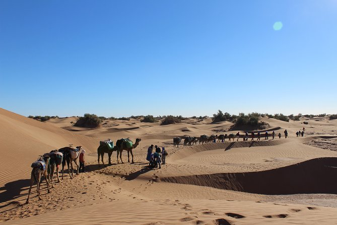 4x4 private tour of the South of Morocco