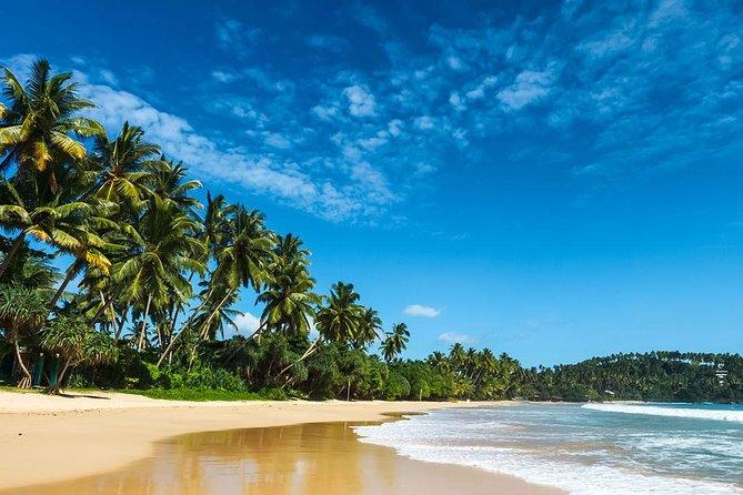 Magnificent Sri Lanka