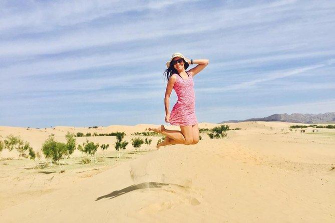 Gobi desert tour 12Days in Mongolia
