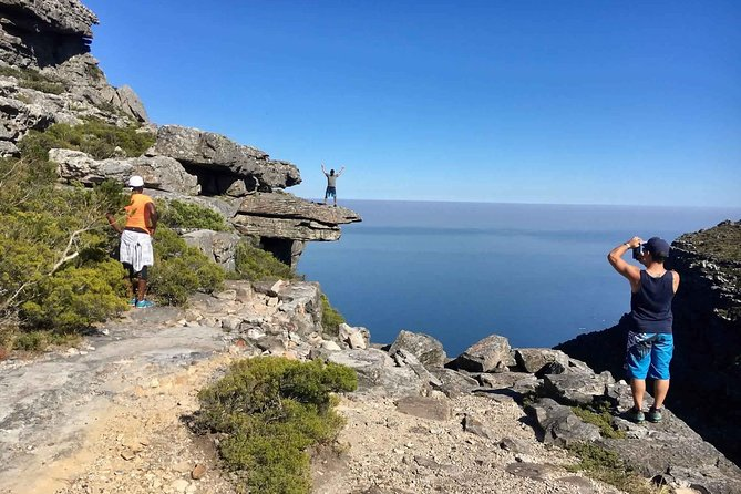 Hike Table Mountain's Most Scenic Hiking Route With Experienced Guides