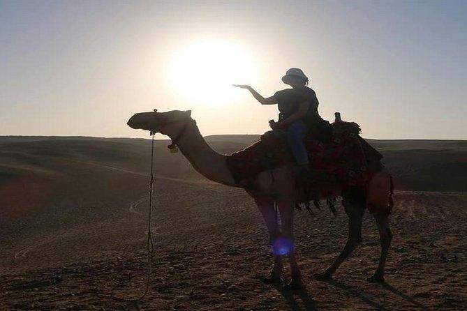 Camel Ride at Giza Pyramids During Sunset