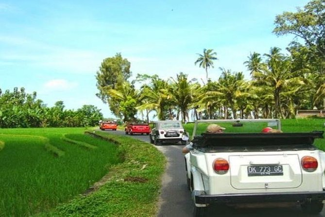 Half Day Rural Charms of Bali Volkswagen Safari