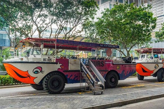 Private Tour:Singapore National Museum and Singapore Flyer and Ducktour