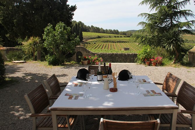 WINE & CAVA TOUR PENEDÉS: Visit 2 Wineries, wine tasting & Tapas lunch photo 1