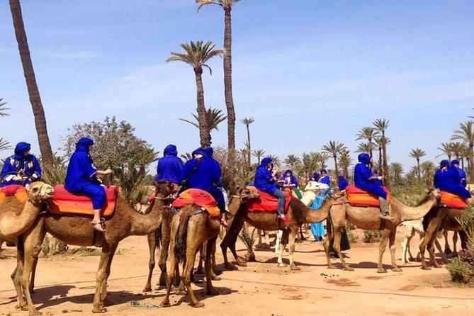 Quad Bike and Camel Ride in Marrakech Palmeraie