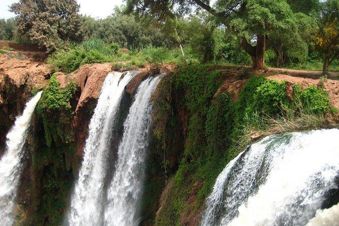 Private day trip to Ouzoud waterfalls from Marrakech photo 3