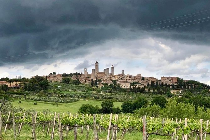 Private Tour: Siena, San Gimignano and Chianti Day Trip from Florence photo 4