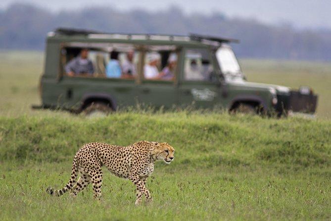 Private Big 5 Safari Tour Full Day