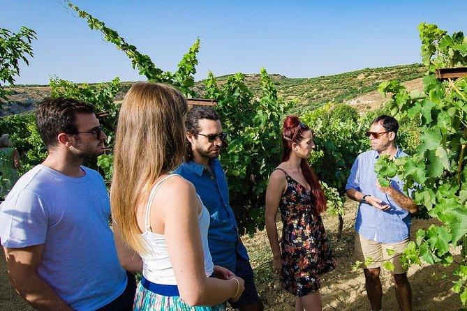 Peza Wine Roads Small Group Tour