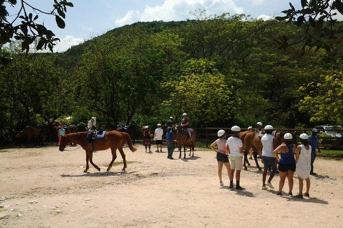 Green Grotto Caves Horseback Riding Adventure from Montego Bay
