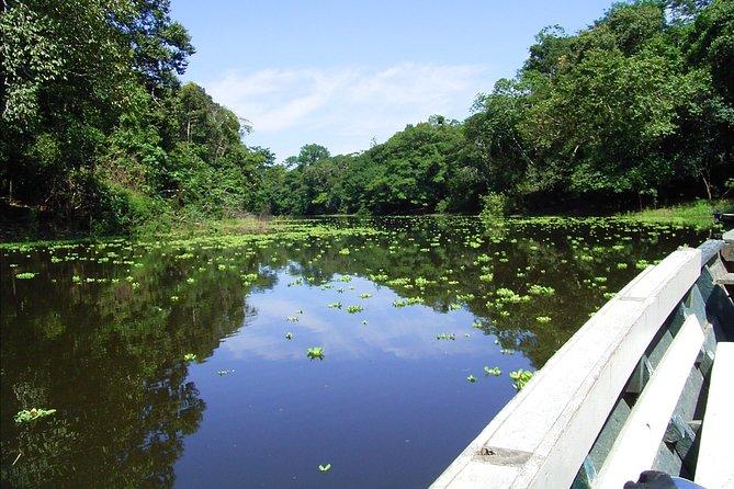 4 days 3 nights – Peruvian Tambopata Jungle