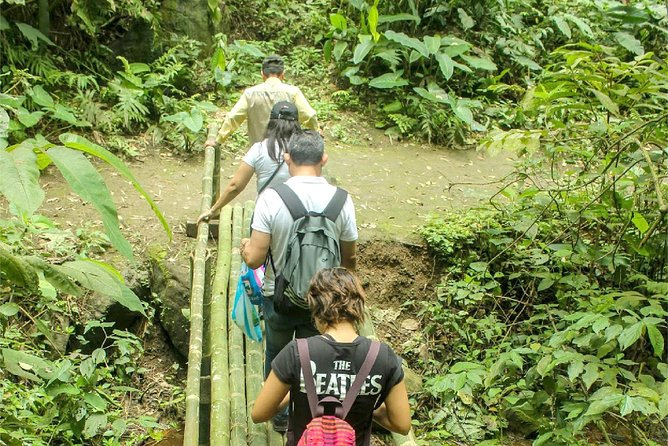 Rainforest Wildlife, Panama Hat makers, Traditional Cuisine. SHORE TOUR