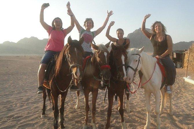 Horse riding in Sharm el sheikh desert