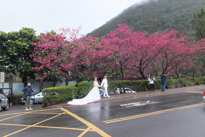 One-day Yangmingshan NP Beitou Hot Spring Park and Tamsui Tour Package