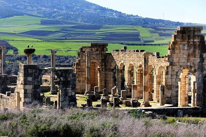 day trip from fes to volubilis and menknes photo 1