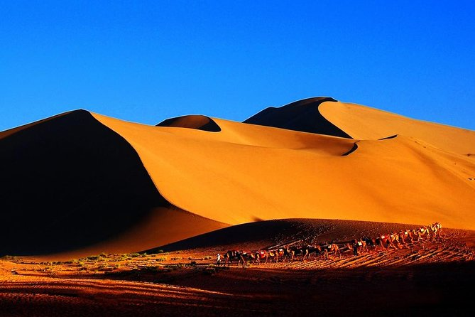 3-Day VIP Silk Road Tour of Dunhuang: Mogao Grottoes, the Great Wall