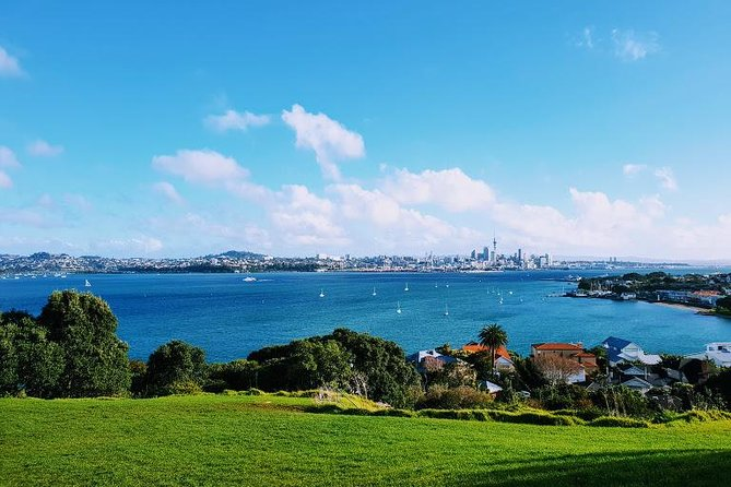 Small Group Private Half Day Auckland Tour