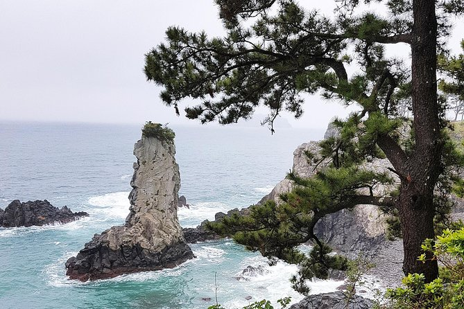 Jeju South Course - (Lunch included) Bus Tour, Full-day Tours, Day Trips