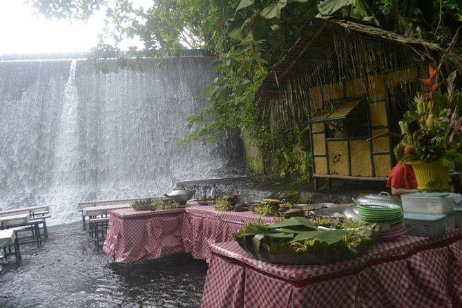 Private Shore Excursion of Villa Escudero with Lunch