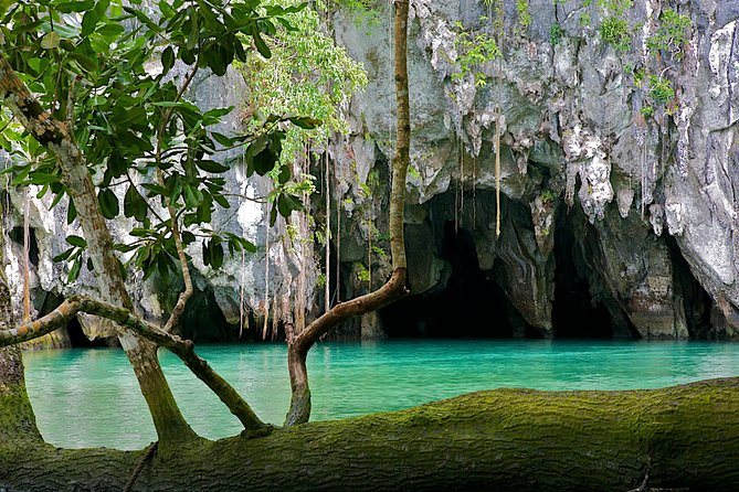 Underground River Private Tour from Puerto Princesa City