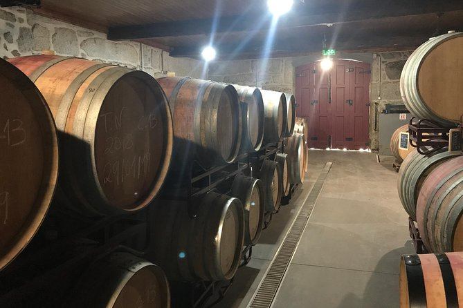 WINE TOUR (1 day) - wine taste and 1 day off road experience in Dão region