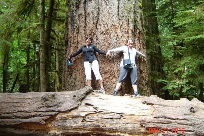 Waterfalls, Cathedral Grove Rainforest, and Coombs Adventure with Hiking