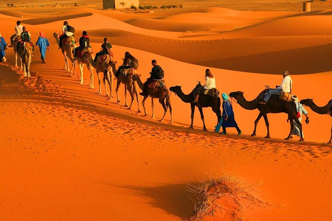 Fes To Fes Desert Tours 2 Days