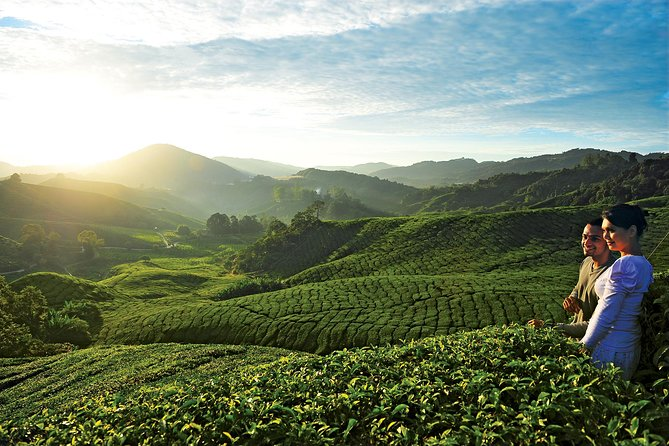 2-Day Cameron Highlands from Kuala Lumpur photo 1