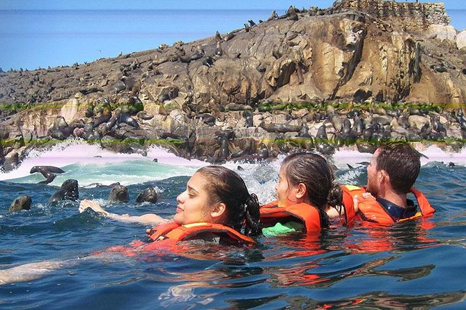 Adventure and adrenaline, swimming with SEA LIONS! & visit the Peruvian islands! photo 2