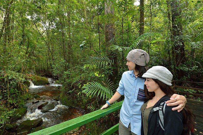 2-Day Kinabalu National Park and Poring Hot Springs from Kota Kinabalu photo 7