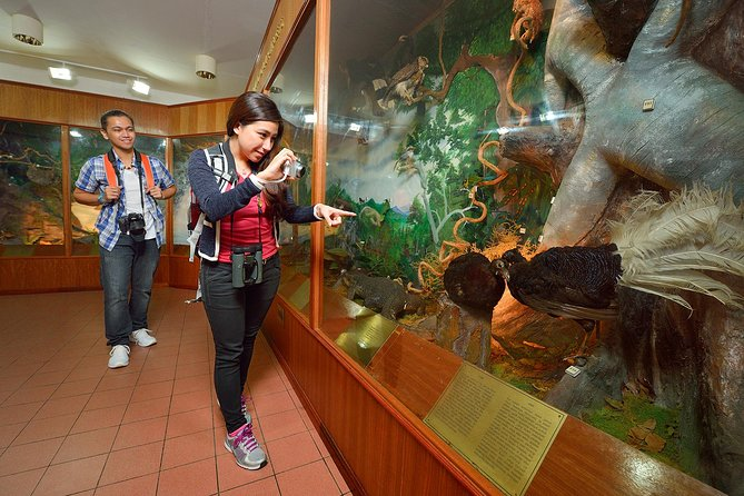 2-Day Kinabalu National Park and Poring Hot Springs from Kota Kinabalu photo 3