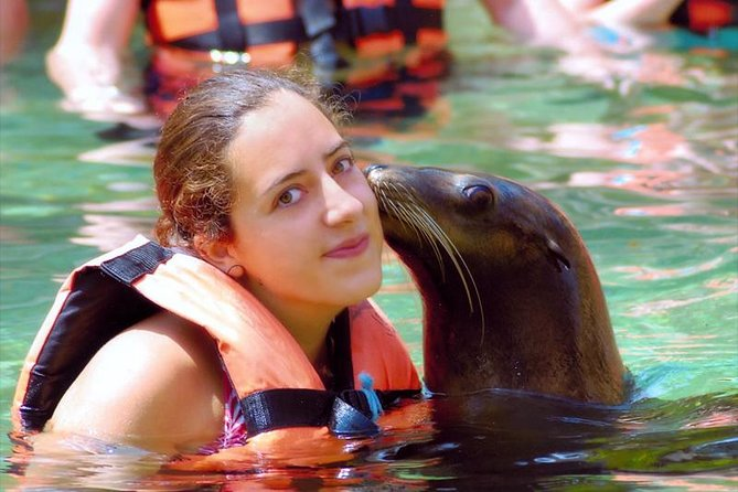 Adventure and adrenaline, swimming with SEA LIONS! & visit the Peruvian islands! photo 1