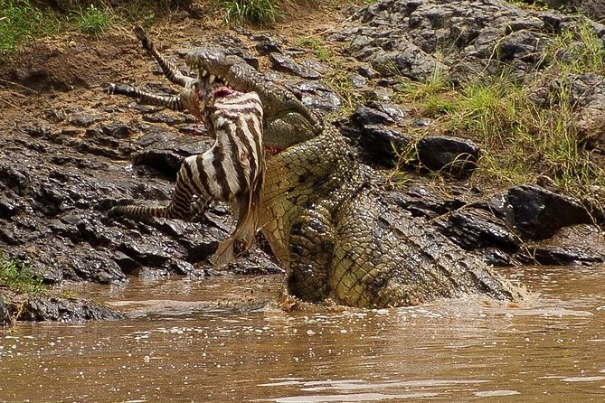 8 Days Kenya discovery safari - MOMBASA